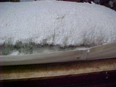 Mattress Natural Cotton Innerspring