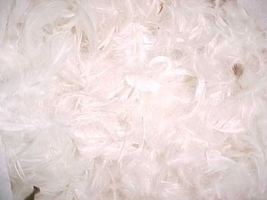 Feather and Down Pillow